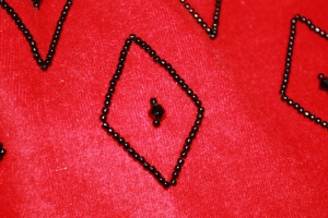 The beading detail on the bag, taken with the flash on (which is why the velvet looks so red!).
